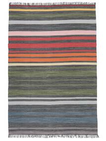 Rainbow Stripe - Szürke Szőnyeg 140X200 Modern Kézi Szövésű Sötétszürke/Olívazöld (Pamut, India)