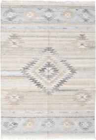 Kültéri Szőnyeg Tulum Szőnyeg 160X230 Modern Kézi Szövésű Világosszürke ( India)